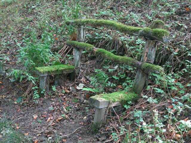 Mossy bench by Shittlehope Burn