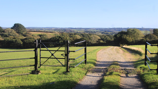 View from a Gate