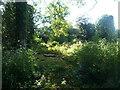 SO7437 : Bronsil Castle (Courtyard) by Fabian Musto
