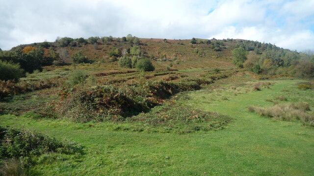 Swinyard Hill