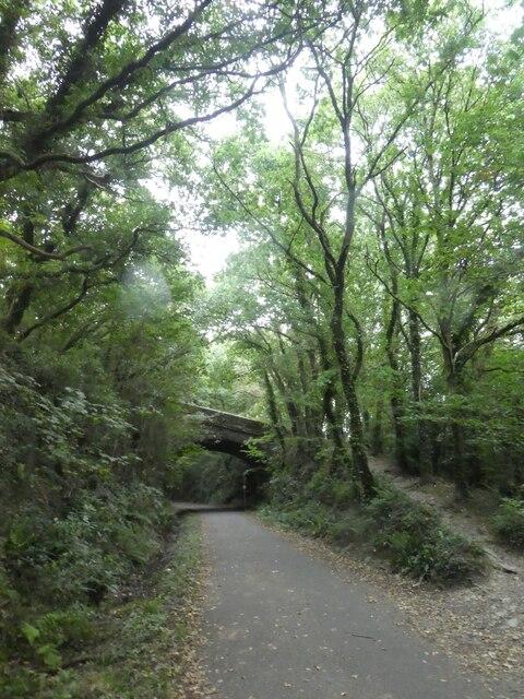 New Road, Bickleigh, bridge over the West Devon Way