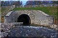 SD5285 : Stainton Aqueduct restored by Ian Taylor