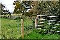 NT6517 : Miniature assault course near Kersheugh by Jim Barton