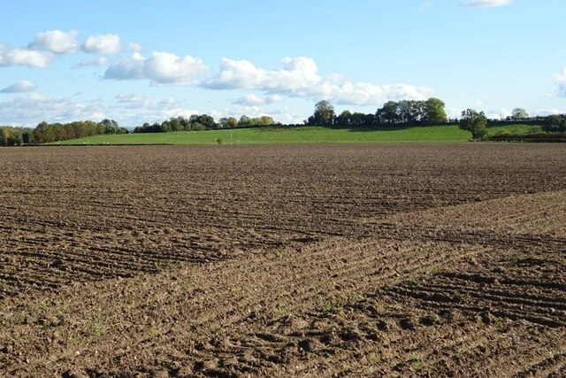 The site of the Battle of Ripple Field