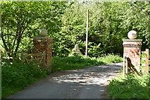 TQ5944 : Gateposts by N Chadwick