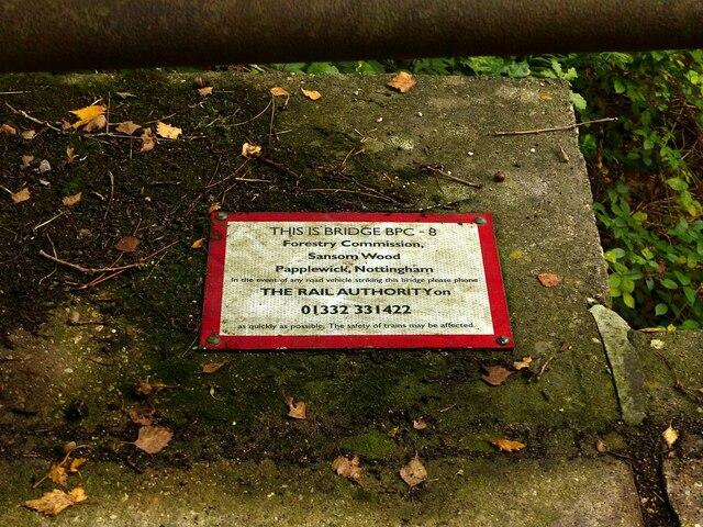 Bridge in Sansom Wood – 2