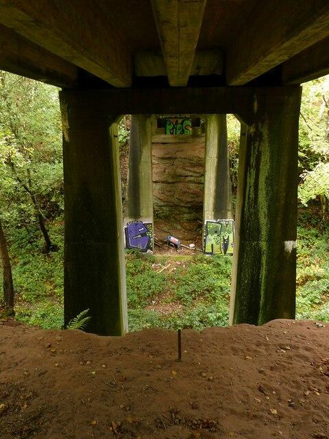 Bridge in Sansom Wood – 4