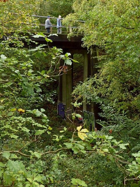 Bridge in Sansom Wood – 5