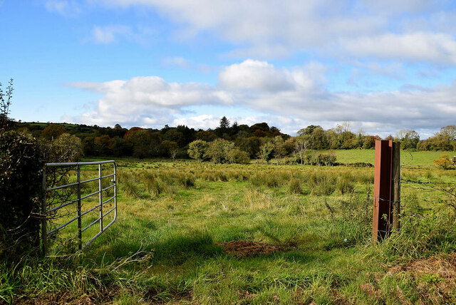 An open field, Lisnacreeve