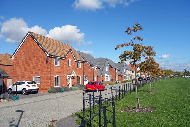 Holly Lane, Ddcot