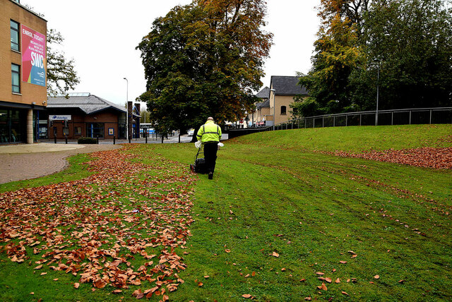 Collecting leaves, South West College, Omagh