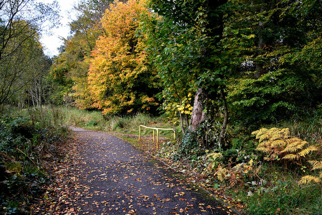 Autumnal at Cranny