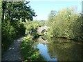 SK0148 : Cherryeye Bridge [no 53] reflected by Christine Johnstone