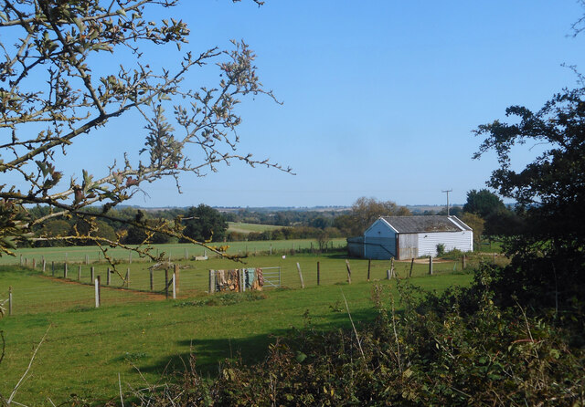 Horse Paddock by the Bridleway