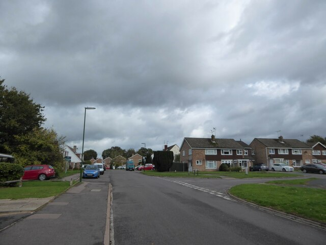Approaching the junction of Beech Road and Rowan Way