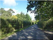 TQ4838 : Beech Green Lane by Marathon