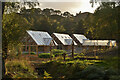 NH4489 : Aquaponic Garden at Alladale Wilderness Reserve, Ardgay, Scotland by Andrew Tryon