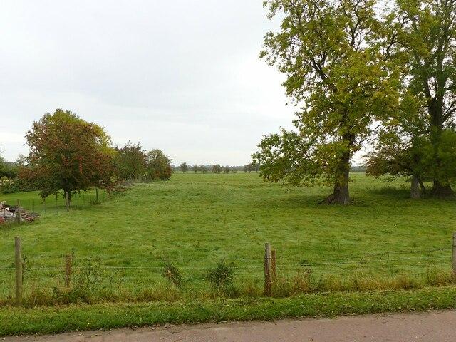 Earthworks alongside Works Lane, Barnstone