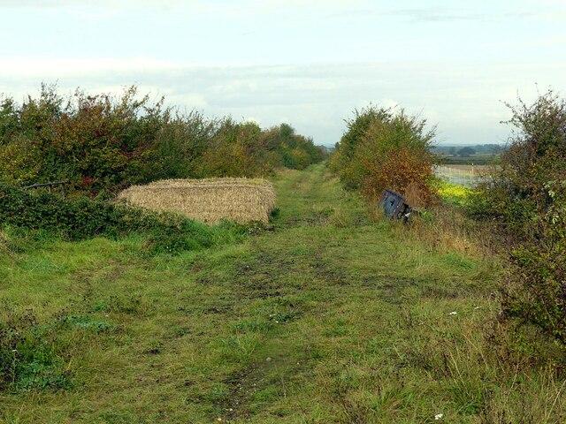 Old railway line near Barnstone