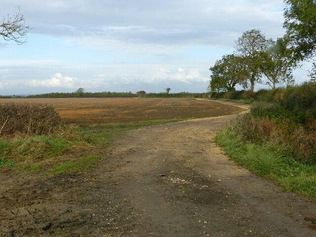 Farm track near Barnstone Lodge