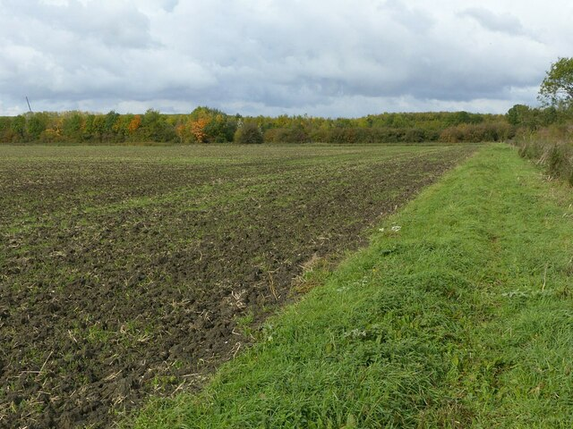 Ploughed field and headland