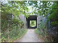 TQ5236 : The Sussex Border Path passes under the Uckfield Line by Marathon