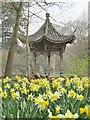 TQ0658 : Wisley - Pagoda by Colin Smith