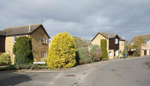 Burwell Meadow, Witney