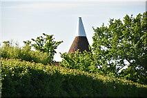 TQ6245 : Crockhurst Farm Oast by N Chadwick