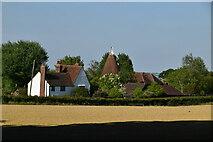 TQ6244 : Crockhurst Oast by N Chadwick