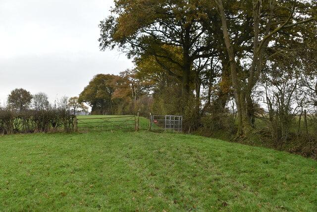 Kissing Gate, Newland Green