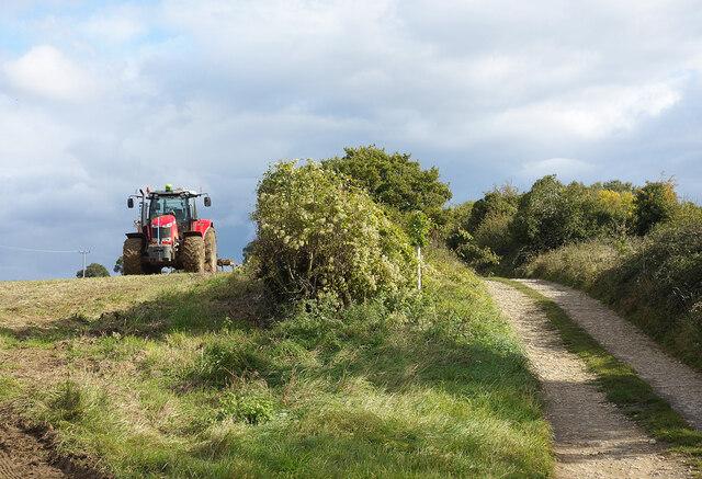Tractor by Saint John's Lane