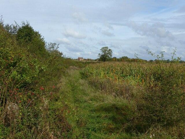 Footpath near Barnstone