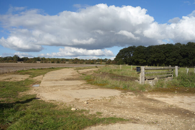 Concrete Road from an Old Airfield