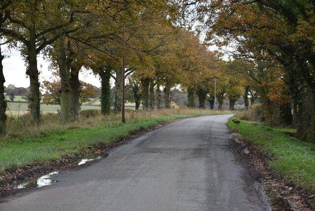 Munday Bois Rd by N Chadwick