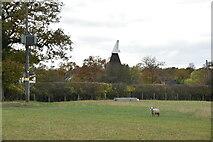 TQ9044 : Giles Farm Oast by N Chadwick