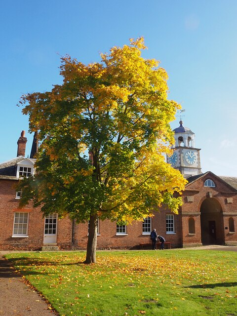 Autumn colour by the clock tower in Clumber Park