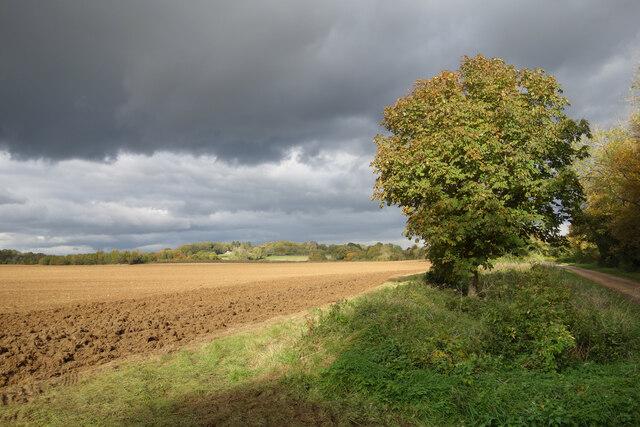 Farmland near Ramsden