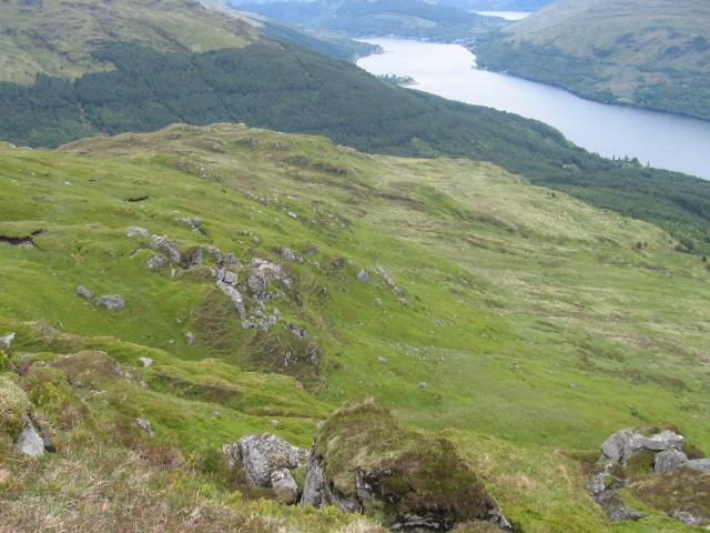 Hillside of Cnoc Coinich toward Loch Long