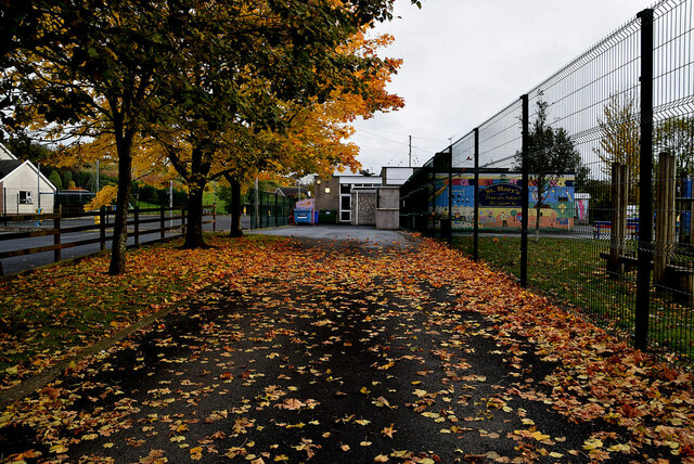 Fallen leaves, St Mary's Primary School, Ballygawley