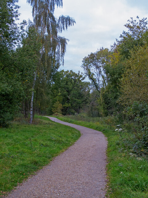Path in Warley Country Park