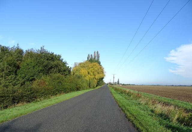 Sutterton Drove, beside a drain