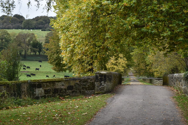Footpath on private drive at Little Durnford Bridge
