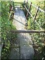 ST3045 : A stile or two on the footbridge by Neil Owen