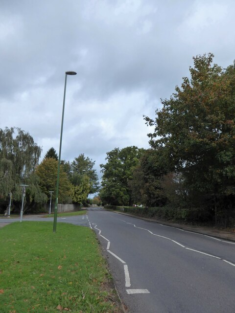 Lamppost on the B2195