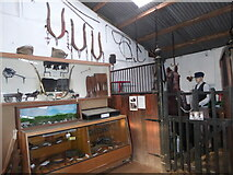 SU8543 : A fascinating visit to Tilford's Rural Life Living Museum (64) by Basher Eyre