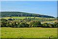 NU0909 : Edlingham : Countryside Scenery by Lewis Clarke