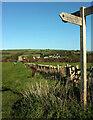SY4889 : Field boundary near Burton Bradstock by Derek Harper