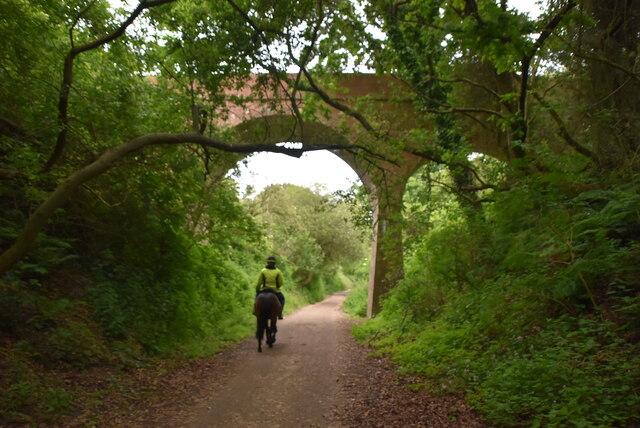 Bridge over former railway line