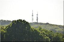 TQ6044 : Pembury transmitters by N Chadwick